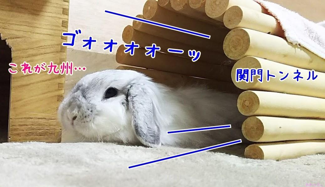 s-DSC_0146.jpg
