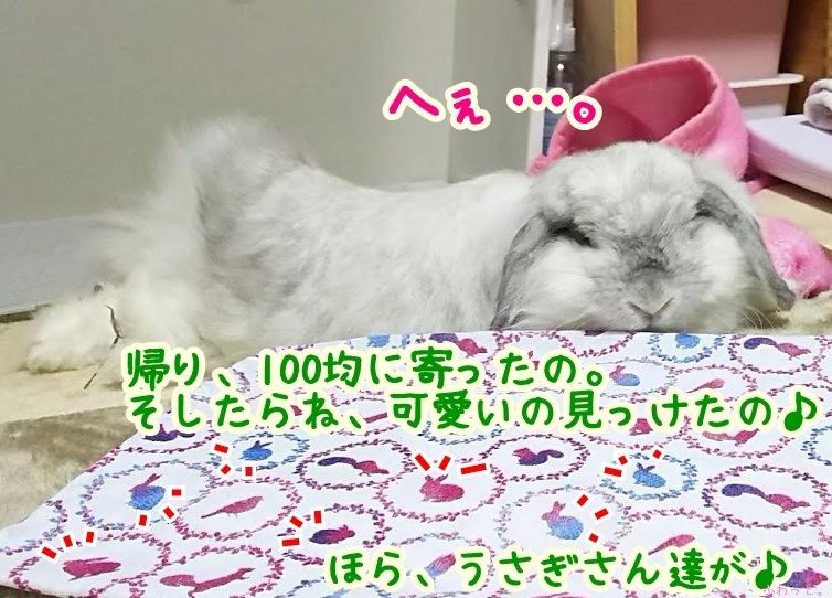s-DSC_9640.jpg