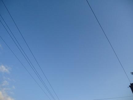 DSC03564.jpg