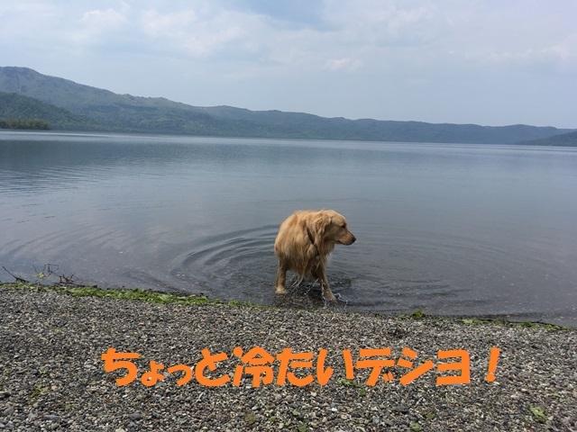 IMG_0419_PP.jpg