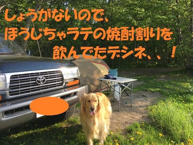 IMG_0512_PP.jpg