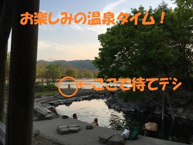 IMG_0536_PP.jpg