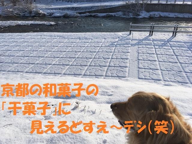 IMG_9026_PP.jpg