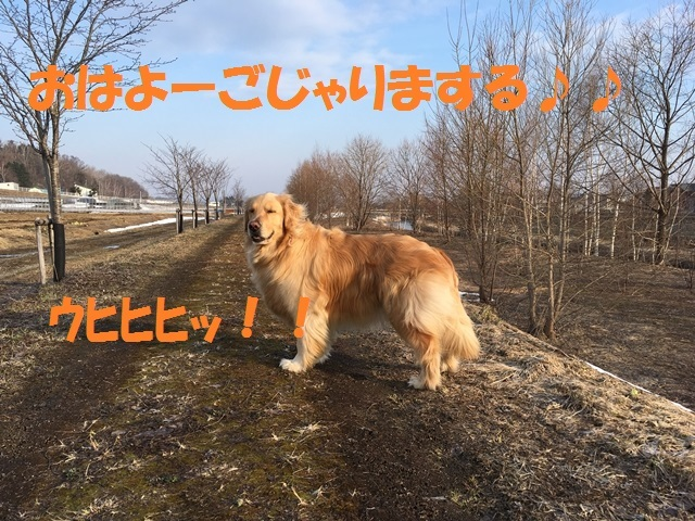 IMG_9094_PP.jpg