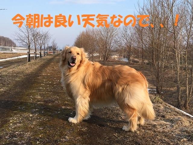 IMG_9096_PP.jpg