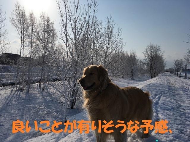 IMG_9122_PP.jpg