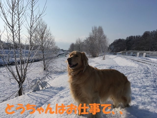 IMG_9125_PP.jpg
