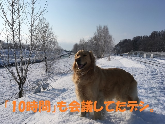 IMG_9127_PP.jpg