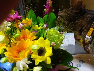 花束とレム