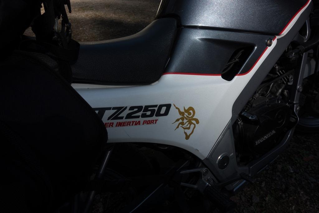 ZSC00157-4.jpg
