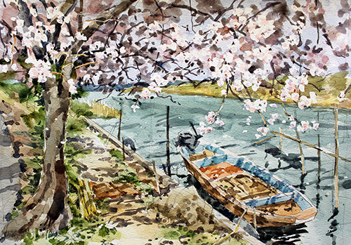 木漏れ日に桜