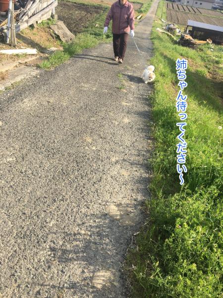 IMG_8367blog.jpg