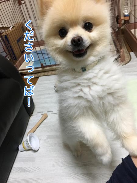 IMG_9429blog.jpg