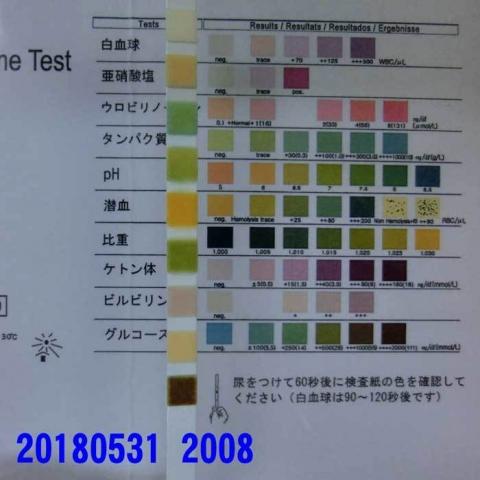 20180531-2008CIMG1478.jpg