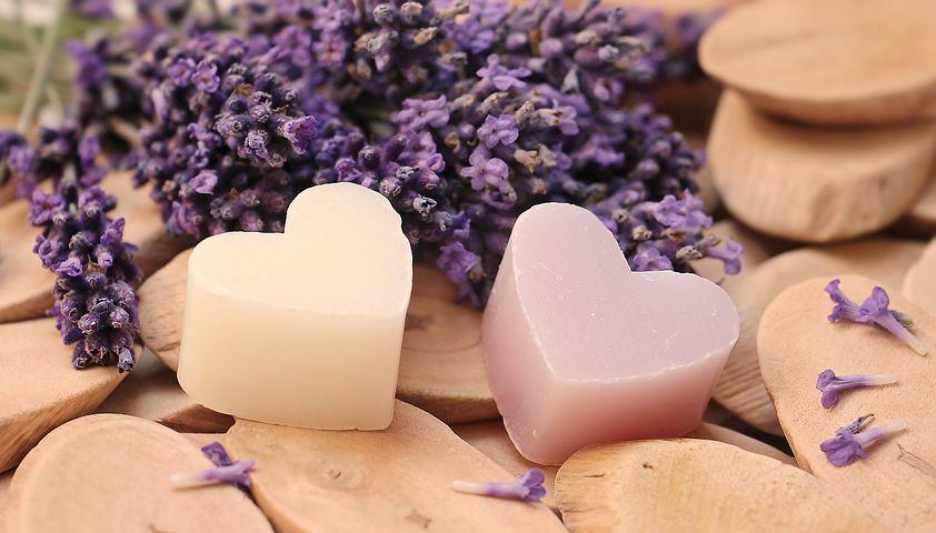 lavender-2443210__480.jpg
