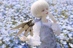 _MG_7607.jpg