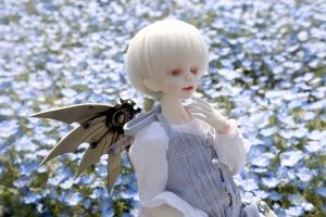 _MG_7624.jpg