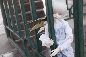 _MG_7764.jpg