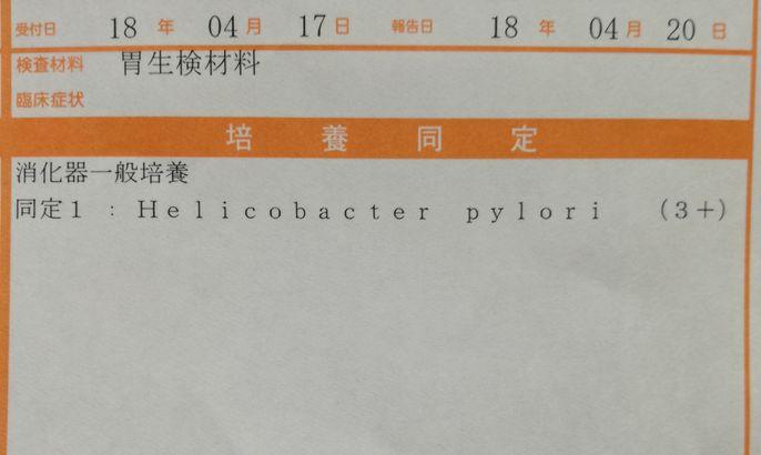 胃粘膜保護・修復の薬を飲み始めた