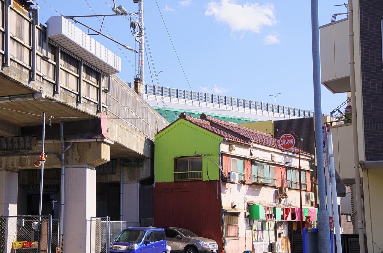 IMGP2497-1.jpg