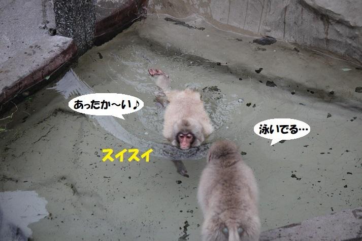173 - コピー (2)
