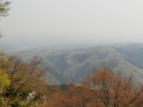 2018-04-04 高尾山 039 (480x360)
