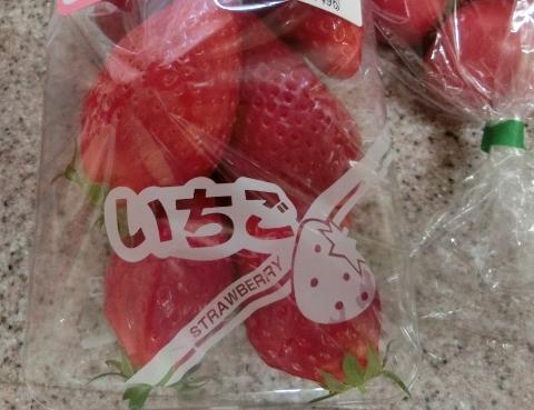 2018-05-14 野菜 010 (480x369)