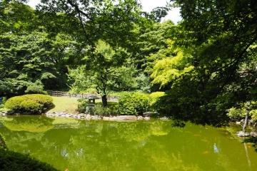 H30060720東京都庭園美術館