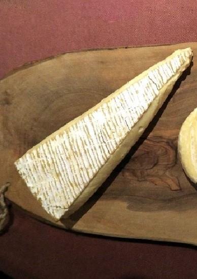 チーズの用語集_白カビタイプ