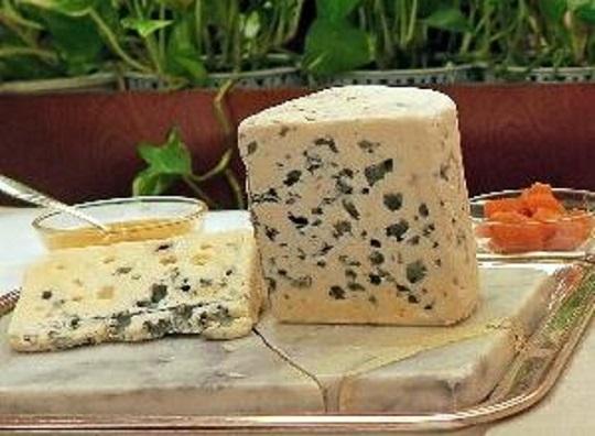 チーズの用語集_青カビタイプ