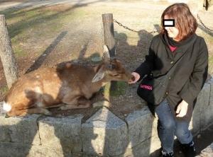 奈良公園10-1
