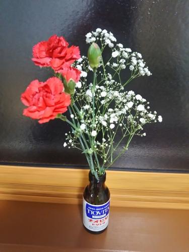 母の日の花2018