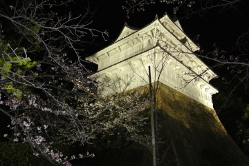 福山城の春