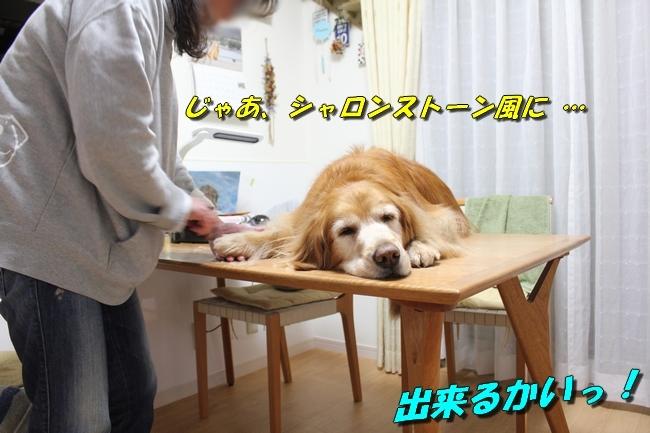 テーブル上新聞 006