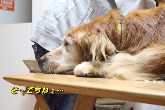 テーブル上新聞 010