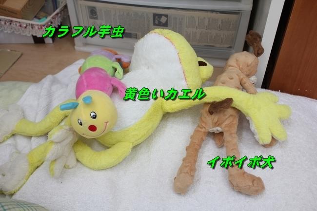 寝床 002
