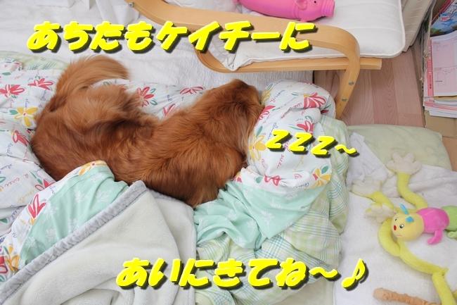 寝床 008