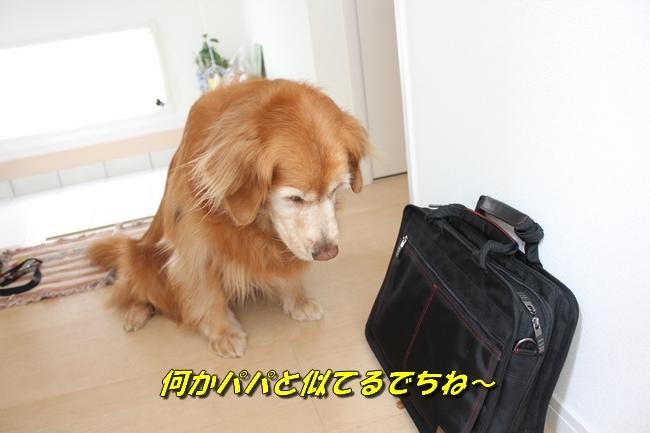 鞄玄関 025