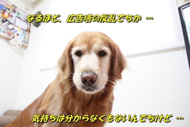 ひよこちゃん表情 012