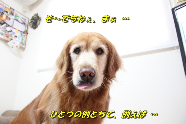 ひよこちゃん表情 013