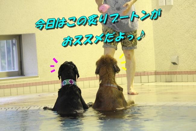 和栗ちゃんプール 138