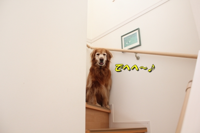階段 001