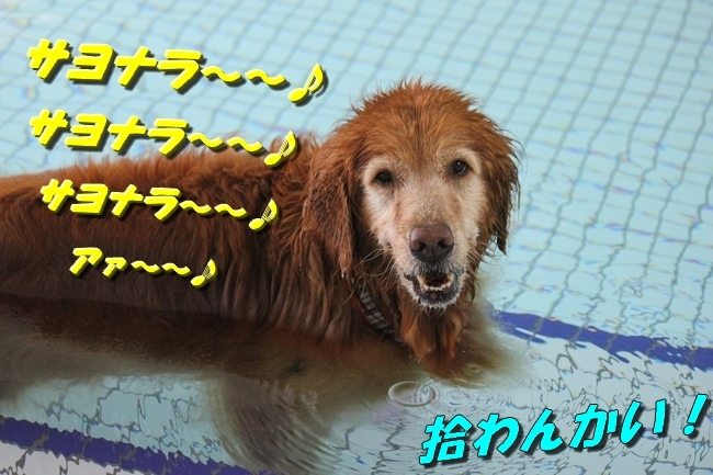 お水の日1005サボちゃん 009