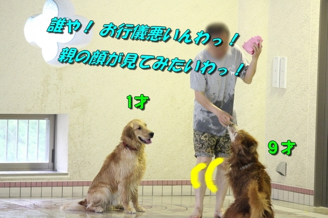 さぼちゃんとお兄ちゃん 182