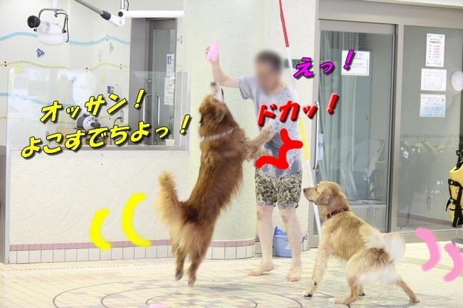 さぼちゃんとお兄ちゃん 138
