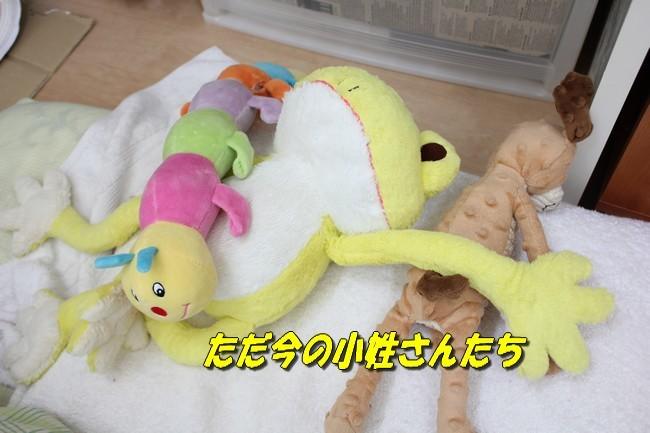 寝床 003