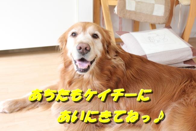 パン新聞会談 038