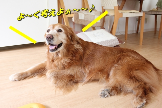 パン新聞会談 039