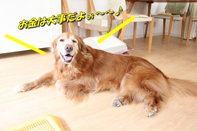 パン新聞会談 044