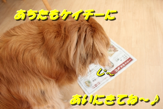 パン新聞会談 120